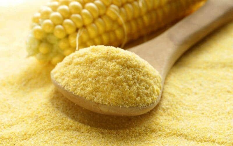 corn flour alternatives