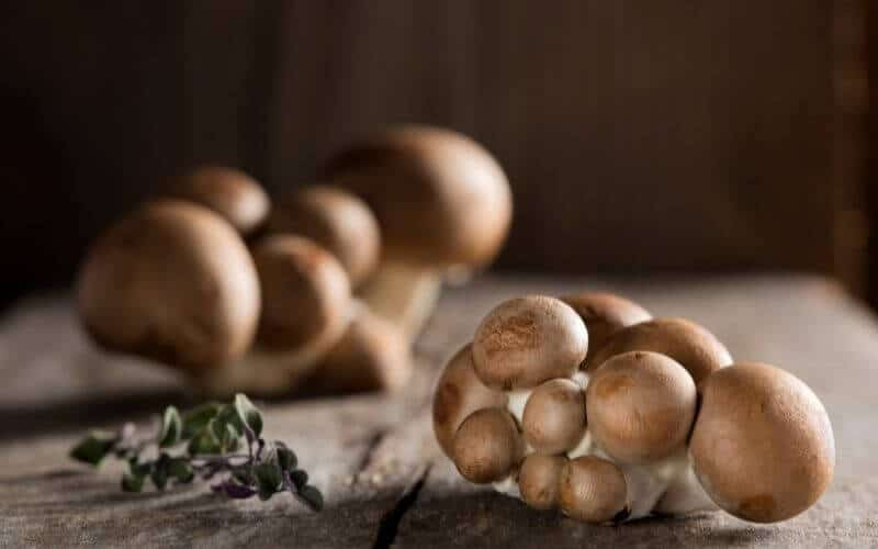 How To Cook Baby Bella Mushrooms