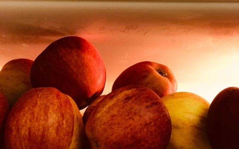 Should You Put Apples In The Fridge