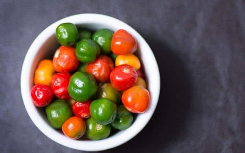 Why Should You Preserve Scotch Bonnet Peppers